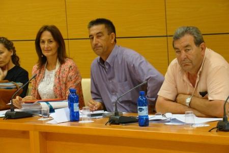 2014 06 25 Pleno Cabildo Fuerteventura 2